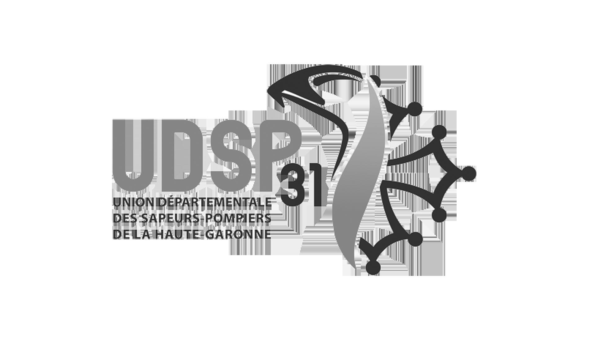 logo-udsp31